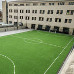 Futbol Sala femení